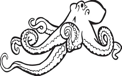 Best Black and White Octopus Shower Curtain Designs | A