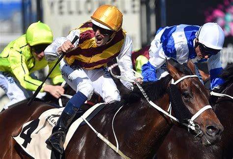 [VIDEO] 2015 Melbourne Cup highights: Live updates